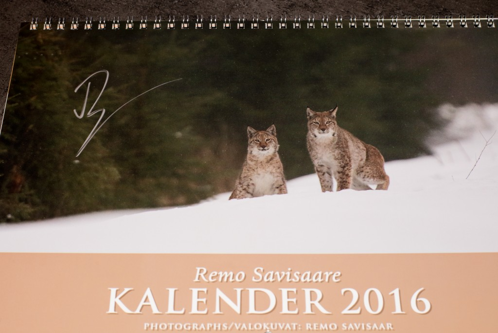Remo Savisaare kalender