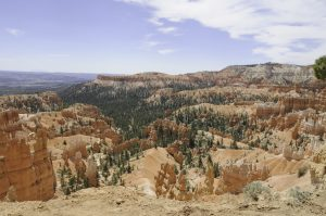 Bryce Canyon - queens garden trail (1 of 1)-2